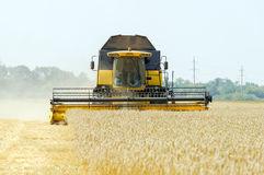 Los precios medios de los cereales afrontan el final de año con un descenso leve pero generalizado